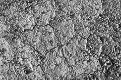 Surface of a grungy dry cracking parched earth for textural background. Black Kuvituskuvat