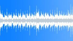 Light&Happy Acoustic Loop ( Inspirational, Positive, Background, Playful) Arkistomusiikki