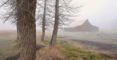 Old farm barn in the mist fog in the morning - stock footage
