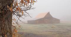Old farm barn in the mist fog in the morning Stock Footage