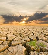 Drought land under the evening sunset Stock Photos