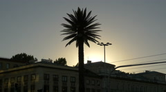 Sunset over the palm tree at the Rondo gen. Charles de Gaulle in Warsaw Stock Footage