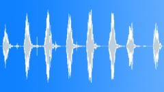 Chickens 2 Sound Effect