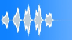 Gull 1 - sound effect