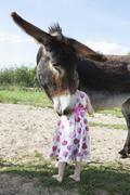 Rear view of girl standing with mule donkey on field Stock Photos