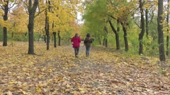Stock Video Footage of Two women walk along the paths in the park with yellow leaves crumble, 4k