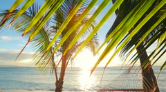 Beautiful Young Woman Relaxing in Tropical Hammock at Sunset. - stock footage