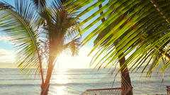 Beautiful Young Woman Relaxing in Tropical Hammock at Sunset. Stock Footage