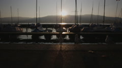 Zurich's lake with yacht and birds Stock Footage