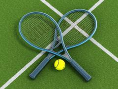 Tennis rackets and ball on grass court - stock illustration