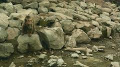 Brown Bears Sitting on Rocks Stock Footage