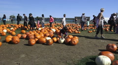 Pumpkinfest at North York's Downsview Park  Stock Footage