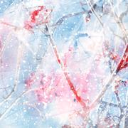 Abstract winter background with ashberry - stock illustration