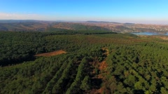 AERIAL VIEW. Green Forests In Large Valley Stock Footage