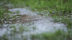 Rainy season flooded the field and rapid stream flows through the grass Stock Footage