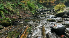 Mountain stream river with rapids - stock footage