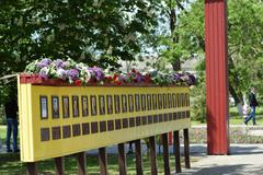 VILLAGE POLTAVA. 9 May, 2015: The laid flowers to a monument in honor of a Vi Stock Photos