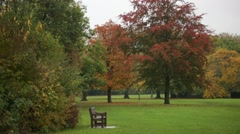 Lonely bench, red autumn, England, Europe Stock Footage