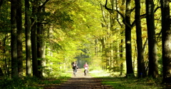 Women cycling in autumn wood Europe Stock Footage