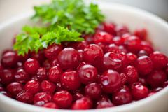 Red lingonberries in white bowl on the table Stock Photos