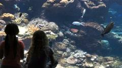 Kids at aquarium Stock Footage