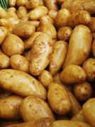 Market organic potatoes Stock Photos