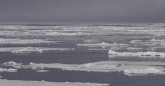 Vast Expanse of Broken Arctic Pack Ice - stock footage