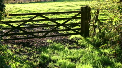 English farm gate bright green grass evening sun Stock Footage