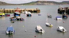 Lyme Regis marina wide shot Stock Footage
