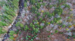 Aerial video of fall foliage in Vermont - stock footage