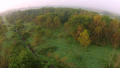 Low aerial flight over trees in the morning fog Stock Footage