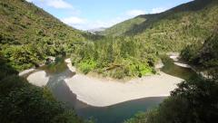 Waioeka river and native forest Stock Footage