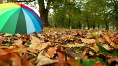 A forgotten varicolored umbrella lies on the ground covered with leaves - stock footage