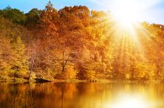 Autumn forest on the lake shore - stock photo