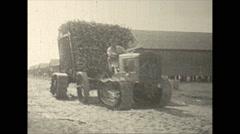 Vintage 16mm film, 1937, Caribbean, sugar cane tractor, load hauled up Stock Footage