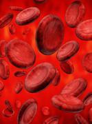 Stock Illustration of Blood cells