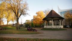 Urban park in the Golden Autumn, England, Europe Stock Footage