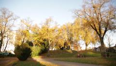 Urban Park in the golden autumn with 2 women on a bench, England, Europe Stock Footage