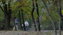 Stock Video Footage of Woman rolls the stroller with a little baby in the autumn park