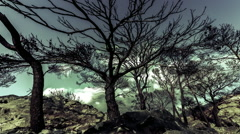 Burned pine trees on top of rocky mountain knoll,barren ground,timelapse Stock Footage