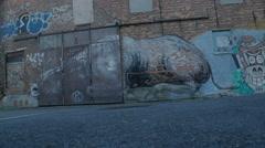 Graffiti Bull Runs to Sunlight Background - Editorial - 29,97FPS NTSC Stock Footage