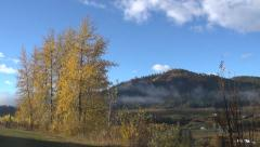 Fall Scenic: Static Lockoff Of Beautiful Fall Colors IN a Rural Town Stock Footage
