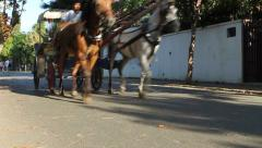 Tourists ride in a traditional horse and cart on one of the Princes Islands Stock Footage