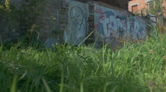 Graffiti of Dissapointed Face on Brick Wall - Editorial - 25FPS PAL Stock Footage