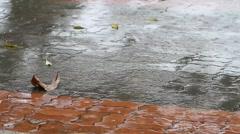 raindrops falling on pavement - stock footage