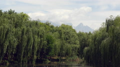 Willow Trees Swaying Infront Of  Jade Dragon Snow Mountains Stock Footage
