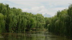 Willow Trees Swaying At Black Dragon Pool Stock Footage