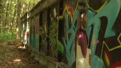 Rasta Graffiti on a Wall Stock Footage