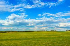 English Countryside Meadow. England, United Kingdom. - stock photo