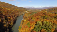 Aerial View Autumn Forest with Mountain River Stock Footage